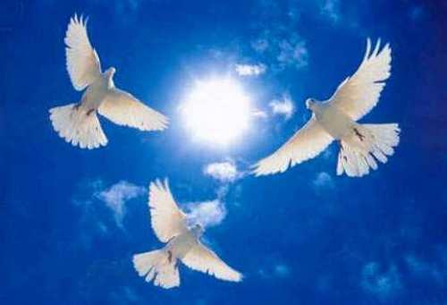 Картинки по Ðапросу святое небо